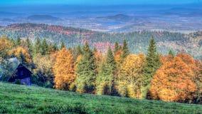 Herbstwälder Lizenzfreie Stockbilder