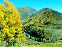 Herbstwälder und blaue Flüsse Lizenzfreie Stockfotos