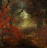Herbstwald lizenzfreie abbildung
