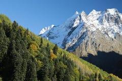 Herbstwald auf dem Hintergrund einer Gebirgsspitze Stockfoto