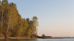 Herbstwald auf dem See Stockfotografie