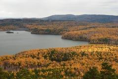 Herbstwald auf dem Seeufer lizenzfreie stockbilder