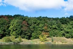 Herbstwald auf dem Ufer von einem See oder von Fluss Im Hintergrund ein blauer Himmel mit weißen Wolken Stockfotografie