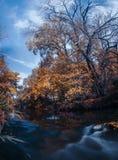 Herbstwald durch den Fluss Stockfoto