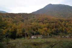 Herbstwald mit alleinblockhaus lizenzfreies stockfoto