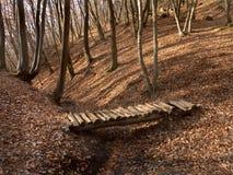 Herbstwald mit Gelbblättern und -Holzbrücke Stockfotos