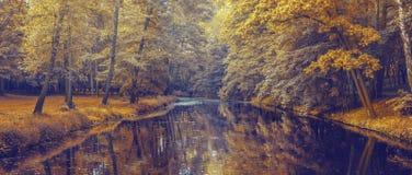 Herbstwald mit Orangenblättern und -fluß Lizenzfreie Stockfotografie