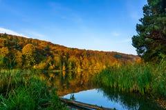 Herbstwald am Rand eines Sees stockbild