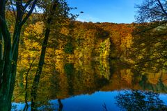 Herbstwald am Rand eines Sees Lizenzfreie Stockfotografie