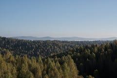 Herbstwald und -berge Stockfoto