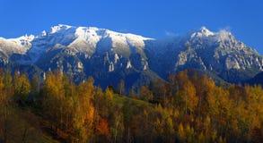 Herbstwald und schneebedeckte Berge stockbild