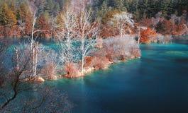 Herbstwald und -see Lizenzfreies Stockfoto