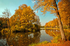 Herbstwald und -see Lizenzfreie Stockfotos