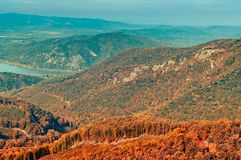 Herbstwaldansicht in Berg, Waldlandschaft stockfotografie