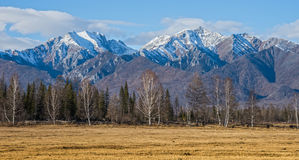 Herbstwaldgürtel in den Vorbergen von Sayan Lizenzfreie Stockfotos