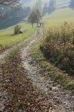 Herbstweg Stockbild