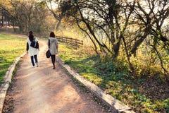 Herbstweg in einem Park Stockbilder