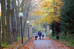 Herbstweg im Park Lizenzfreie Stockbilder