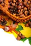 Herbstweidenkorb Lizenzfreies Stockbild