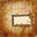 Herbstweinlesehintergrund mit Feld Stockfoto