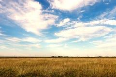 Herbstwiese und blauer Himmel Lizenzfreie Stockfotos