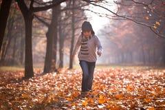 Herbstzeit Lizenzfreie Stockbilder