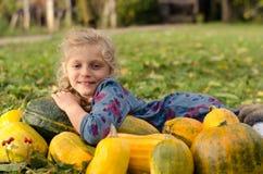Herbstzeit in der Natur Lizenzfreies Stockbild