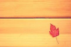 Herbstzeitdekoration, trockene Ahornblätter festgesteckt auf Seil mit Kleidungsstift, hölzerner Hintergrund instagram Filter Stockbild