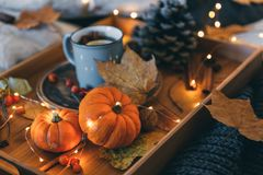 Herbstzusammensetzung über hölzernem Hintergrund Stockfoto