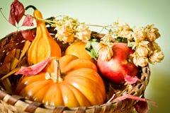 Herbstzusammensetzung Stockfoto