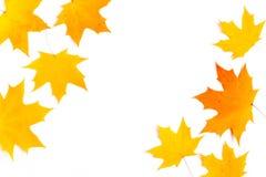 Herbstzusammensetzung, Ahornblätter, Draufsicht, flache Lage Grenze gemacht von Farbfallenden Ahornblättern stockfoto
