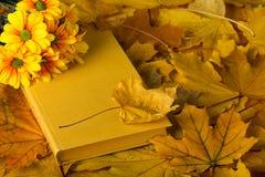 Herbstzusammensetzung, -buch und -blätter stockfotos