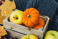 Herbstzusammensetzung mit Äpfeln lizenzfreie stockfotos