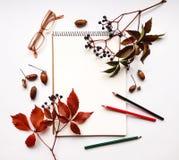 Herbstzusammensetzung mit dem Sketchbook, Bleistiften und Gläsern, verziert mit roten Blättern und Beeren Flache Lage, Draufsicht stockbilder