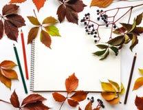 Herbstzusammensetzung mit dem Sketchbook und Bleistiften, verziert mit roten Blättern und Beeren Flache Lage, Draufsicht Stockfotografie