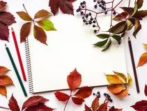 Herbstzusammensetzung mit dem Sketchbook und Bleistiften, verziert mit roten Blättern und Beeren Flache Lage, Draufsicht Stockfoto