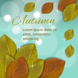 Herbstzusammensetzung mit den Gelben und Rotblättern Stockfotografie