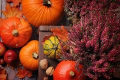 Herbstzusammensetzung mit orange Kürbisen auf einem braunen bankground stockbild