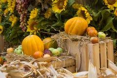 Herbstzusammensetzung mit süßer Melone und Äpfeln, selektives focuson ein natürlicher Hintergrund mit Sonnenblume stockfotografie