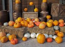 Herbstzusammensetzung von Kürbisen lizenzfreie stockbilder