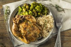 Free Herby Baked Cornish Game Hens Royalty Free Stock Photos - 102710448
