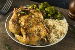 Herby Baked Cornish Game Hens royalty free stock image