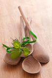 Herby Wooden Spoons. Rustic wooden spoons on pine table with bundle of tied herbs Stock Photo