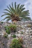 Herceg Novi em Montenegro Fotografia de Stock