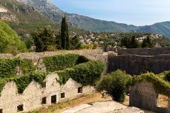 Herceg Novi, Montenegro As casas e as paredes de pedra cobriram pela hera a Imagens de Stock Royalty Free