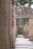 Herculaneum Italien Stäng sig upp av väggvisningdetaljen, i fördärvar av den romerska staden av Herculaneum/Ercolano nära Naples, arkivfoto