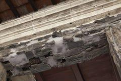 Herculaneum ruins Stock Photography