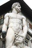 Hercule和Cacus在佛罗伦萨 免版税库存照片