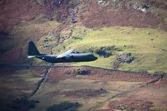 Hercules Aircraft Stock Image