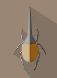 Hercules Beetle Insect selvaggio Fotografia Stock Libera da Diritti